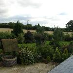  View over the garden