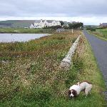  The Hotel with the loch in the foreground, and the owners spaniel who accompanied me on my...