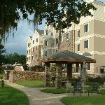 Staybridge Suites Tallahassee I-10 East resmi