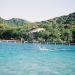 Roatan Institute for Marine Sciences - Anthony's Key Resort