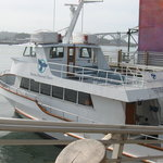 Marine Discovery Tours