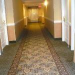 Photo de Comfort Inn &; Suites Goshen / Middletown
