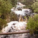 Tributary of Halladale River