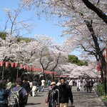 Ueno Park