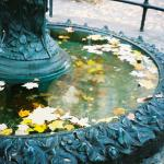 Fountain in Fall