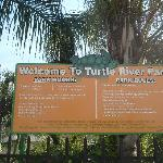  Turtle Park