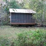 Foto de Wildlife Gardens Bed and Breakfast and Swamp Tours
