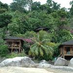 Photo de Bamboo Hill Chalets