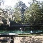 uniper Springs RA- blue hole / swimming area