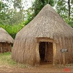 a homestead at the bomas of Kenya