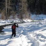 Great places to snowshoe, too