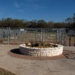 Arlington Dog Park - a raised flower bed marks the separation between the two dog sections