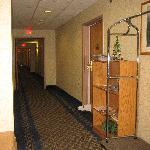 Microtel Inn Latham, NY - Ground floor hallway