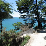  Abel Tasman Track Adjacent To Medlands Beach