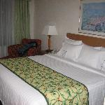 Fairfield Inn Rochester Airport resmi