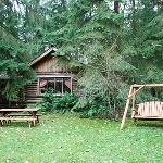  View of the Log Cabin from the grounds