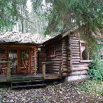 Another view of the log cabin - so cute!