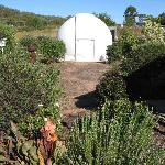  Ballandean - Twinstar Guesthouse - Observatory