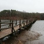 Chickasaw SP-  The beautiful bridge