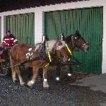 Sleigh rides are available - the horses live across the street!
