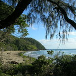 Foto van Wait a While in the Daintree