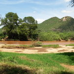 Φωτογραφία: Samburu Serena Safari Lodge