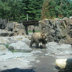 Lake Superior Zoo & Zoological Society