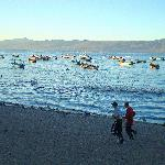 Joggers enjoying the beach at Lake Chapala