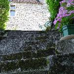 steps down to or cottage