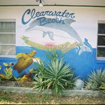 Clearwater Beach International Hostel