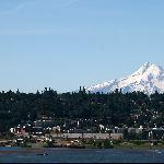  View of Mt Hood from the Columbia River