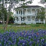  Belle of Round Top B&amp;B