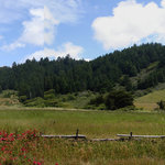 Meadow and hills across the street