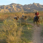 Pusch Ridge Stables