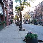 Foto A Greenwich Village Habitue