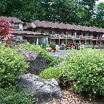 Foto van Tall Pines Motel