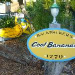 Cool Bananas Backpackers Lodge