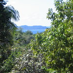 Vallee de Mai Nature Reserve