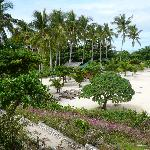 Bantigue Cove Malapascua Beach Resort & Dive Shop의 사진