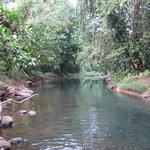 Small river near hotel. You can swim here in the wet season