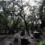 Beaufort Burying Ground