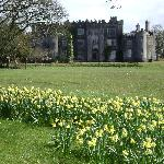Birr Castle across the street