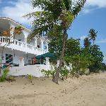 Photo de Coconut Palms Inn