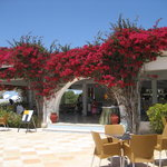 Hotel Djerba Palace
