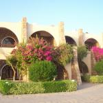 ‪Seti Abu Simbel Lake Resort‬