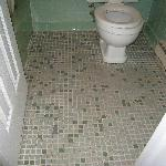  toilet and floor