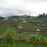 Foto de Ooty - Elk Hill, A Sterling Holidays Resort