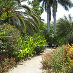 Queen Elizabeth II Botanic Park