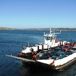 Car Ferry to Brier Island
