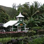 Photo of Papaya Paradise Bed and Breakfast